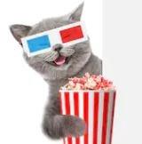 MovieCat1408