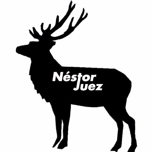 Néstor Juez Rojo
