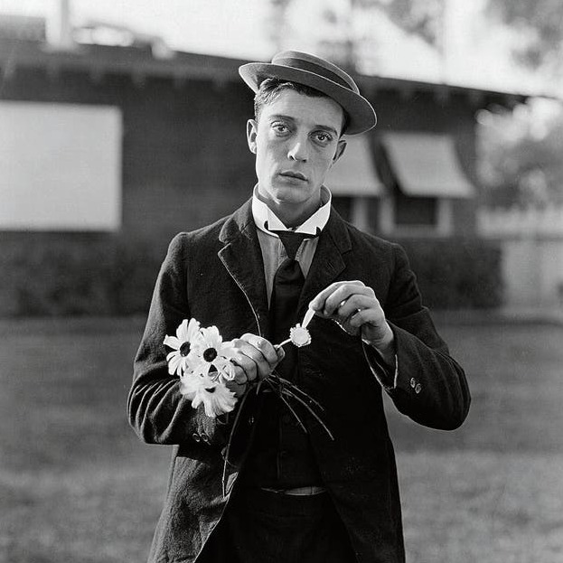 The Movies Universe