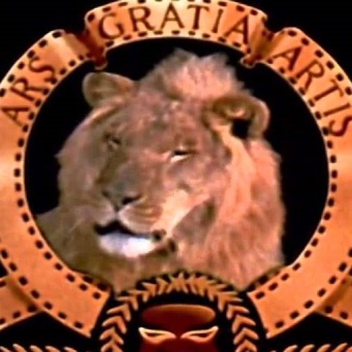 The Lion from the MGM Logo