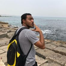 Ahmed Shawky El-Shorbagy