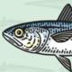 HokiFish