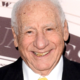 mel_brooks_fan7