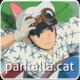 Pantalla .cat