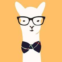 The Hipster Llama