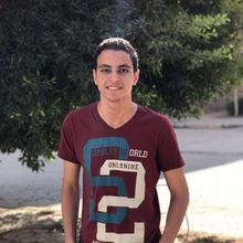 Mohamed Ibrahim