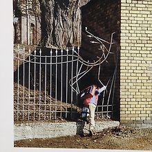 Henrique Teixeira