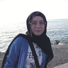 Nour Shebani