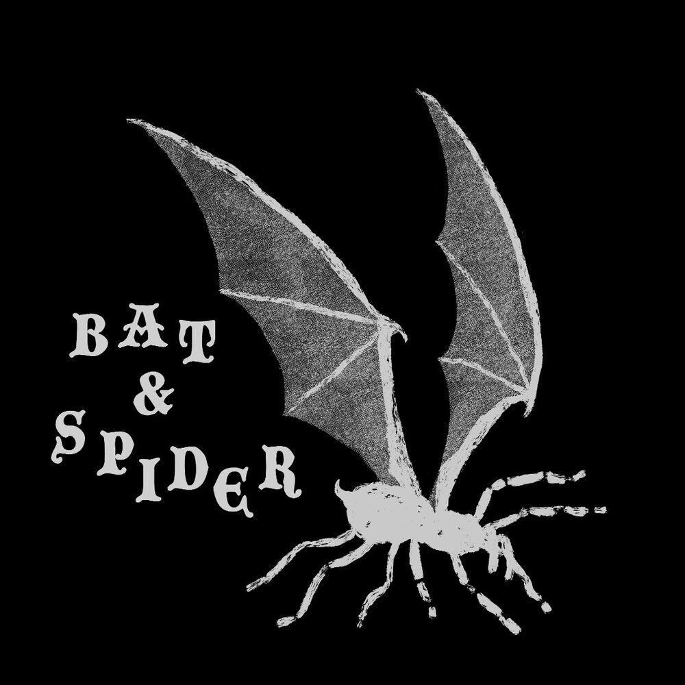 Bat & Spider