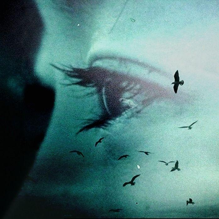 Matteo Dellisanti