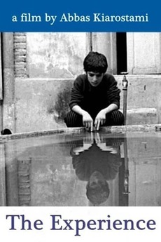 The Experience (1973)