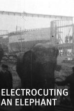Electrocuting an Elephant
