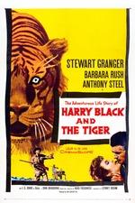 Harry Black