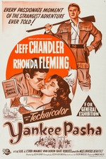 Yankee Pasha