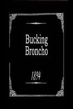 Bucking Broncho