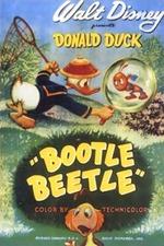Bootle Beetle
