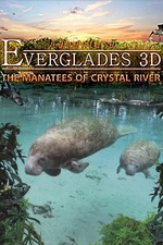 Adventure Everglades 3D - The Manatees of Crystal River