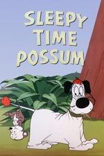 Sleepy Time Possum