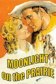 Moonlight on the Prairie