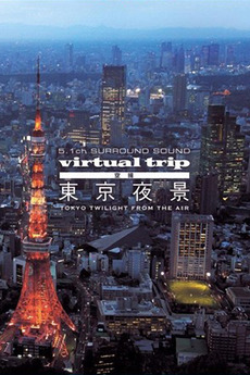 Virtual Trip: Tokyo Twilight from the Air