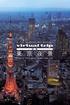 Virtual Trip: Tokyo Twilight from the Air