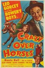 Crazy Over Horses