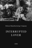 Interrupted Lovers