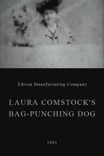 Laura Comstock's Bag-Punching Dog