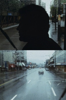 Seeing in the Rain