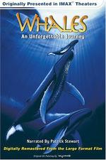 IMAX - Wale Giganten der Meere