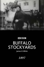Buffalo Stockyards