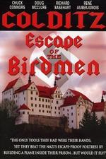 The Birdmen