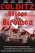 Escape of the Birdmen
