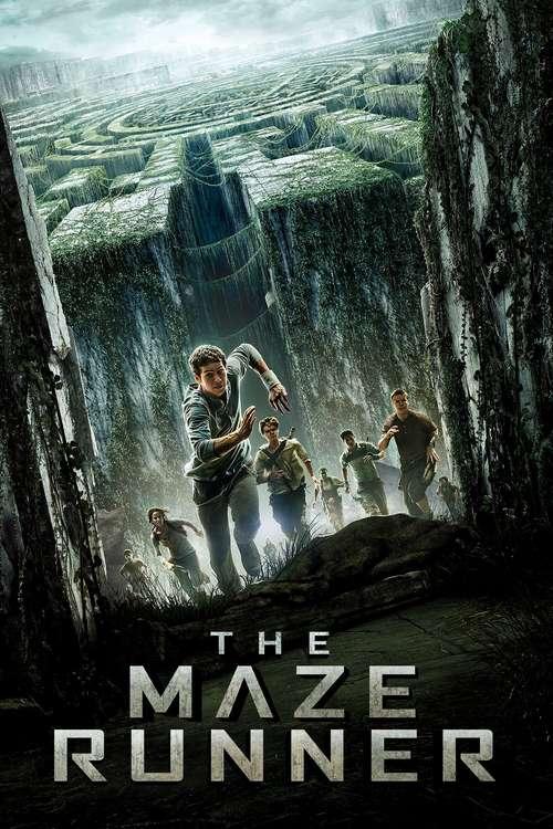 Cover The Maze Runner