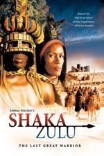 Shaka Zulu: The Last Great Warrior