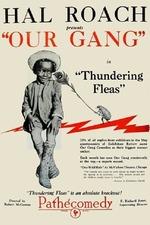 Thundering Fleas