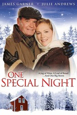 One Special Night