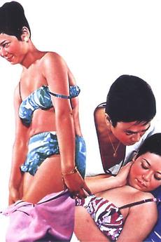 Woman's Harem