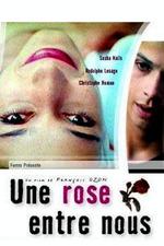 A Rose Between Us