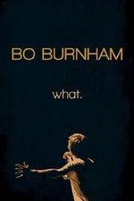 Bo Burnham: What.