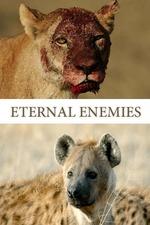 Eternal Enemies: Lions & Hyenas