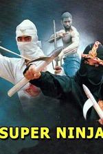 The Super Ninja