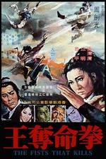 Ninja Fist of Fire