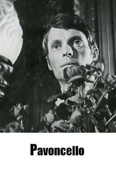 Pavoncello (1967)