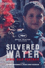 Silvered Water