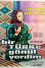 I Lost My Heart to a Turk