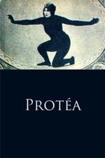 Protéa