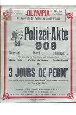 Polizeiakte 909