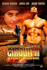 The Circuit III: Final Flight
