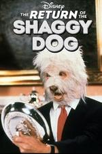Return of the Shaggy Dog